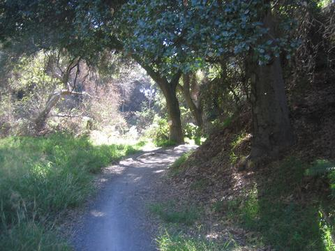 View of Sullivan Canyon from SoCalMtB.com