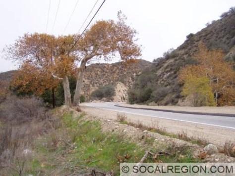 Near Rush Canyon