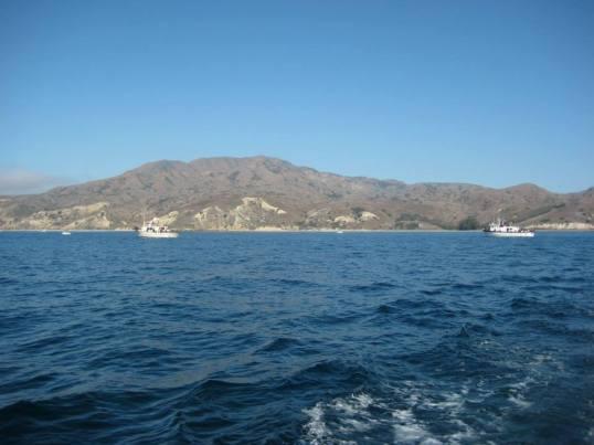 South side, Santa Cruz Island (photo Mel Layosa)