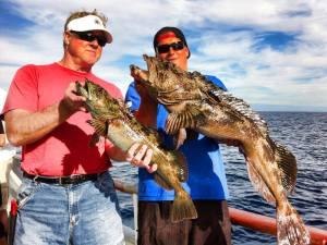 Hitcher! (pic courtesy Tribute Sportfishing)