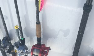 Choosing A Saltwater Fishing Rod