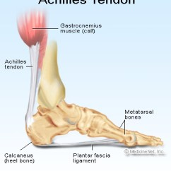 Top Of Foot Pain Diagram Boat Battery Isolator Wiring Soccer Blog | Achilles Tendon Rupture: The End Road For Beckham?