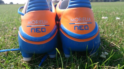 Orange Morelia Neo