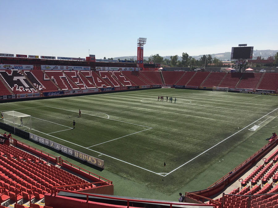 Club Tijuana Must Reorganize Before a Possible Relegation Next Year
