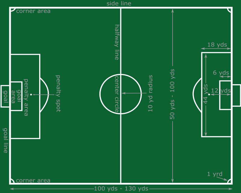 football pitch diagram to print lungs circulatory system labeled soccer field of play