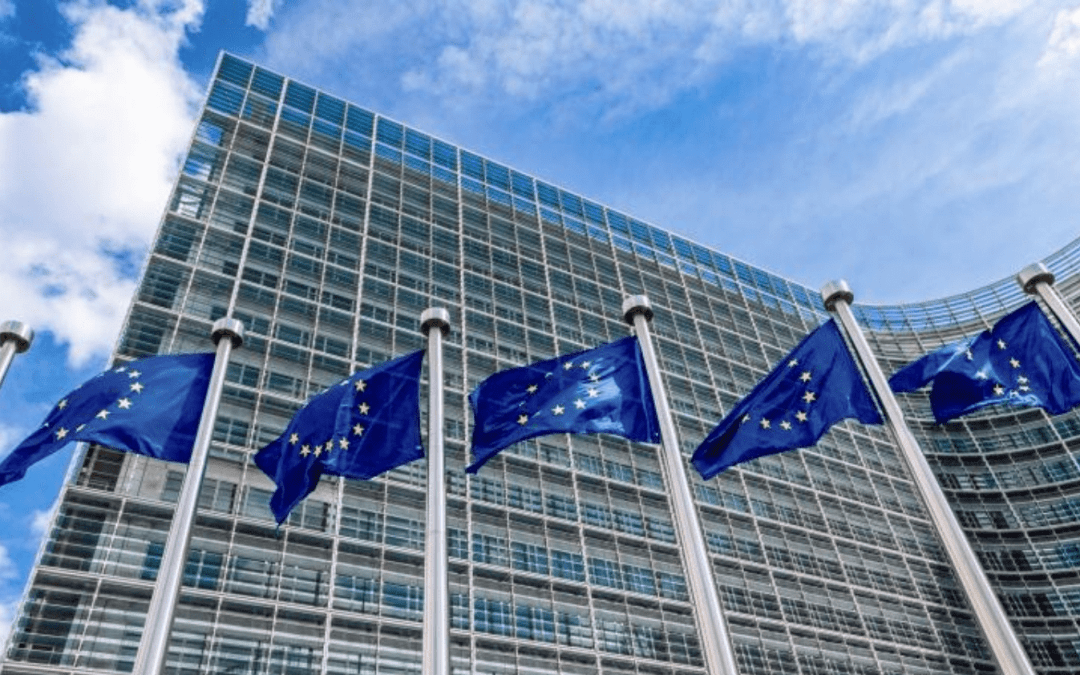 Call for Papers from European Commission