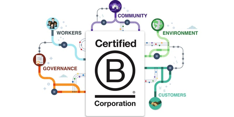 Building a B Corp Movement in Ireland