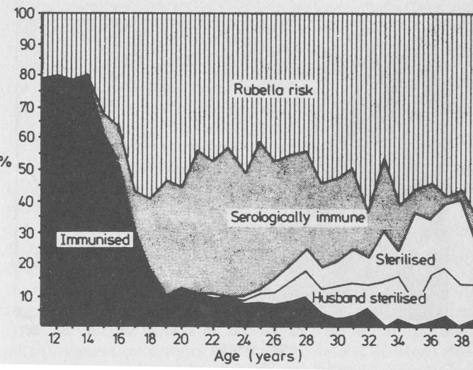 Rubella risk 1980