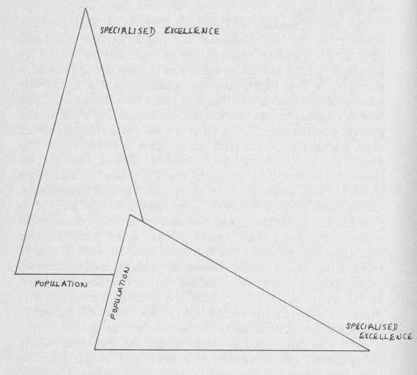 Fig 5.4    Left:       the professional pyramid of the Osier paradigm.  Right:    the inclined plane of population-based anticipatory care.