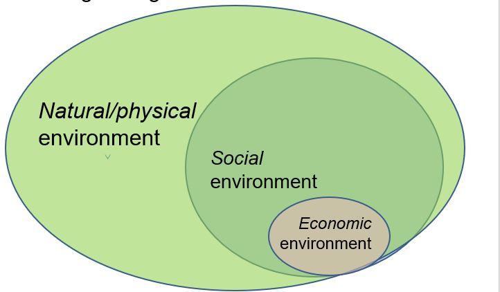 Human environment
