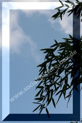 Blätter - Himmel - Wolken - Rahmen