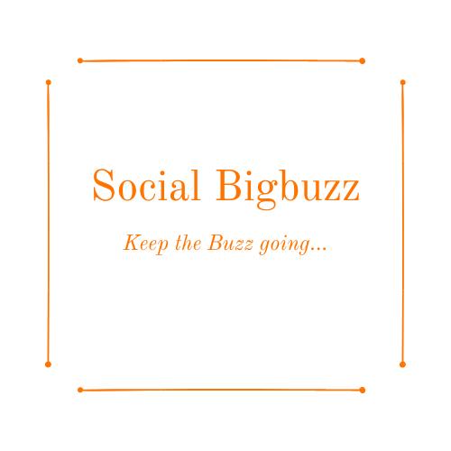 Social Bigbuzz Logo