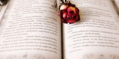 Let these 5 books engulf you in the world of poetry