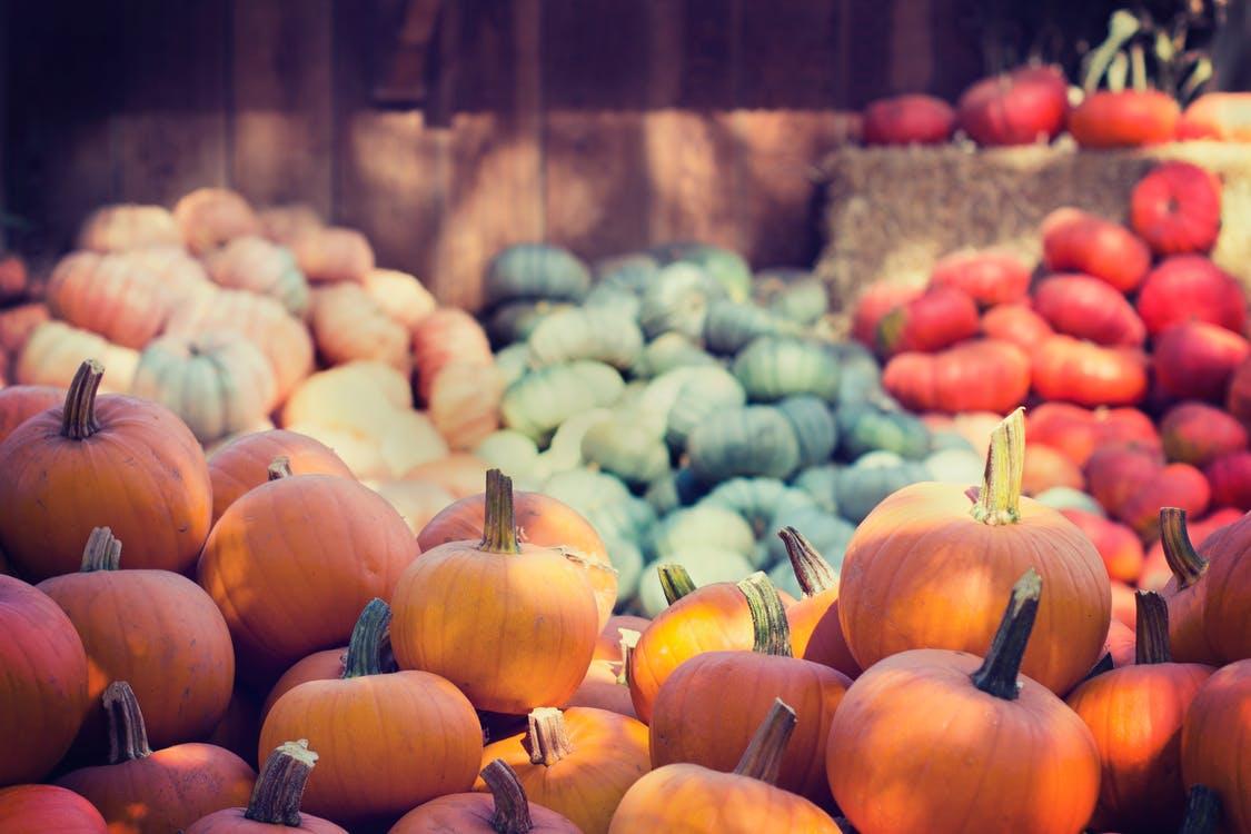 pumpkin farms, making money with kijiji, sell online in vancouver, kijiji,