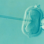 male fertility, infertility in men, dad blog, ivf blog, socialdad.ca, socialdad, vancouver dad, vancouver ivf, olive fertility, fertility clinics in vancouver, canada dad,
