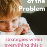 Size of the Problem Strategy
