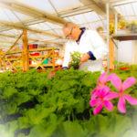 PSX 20150323 140602 150x150 Attività di formazione e conoscenza florovivaistica