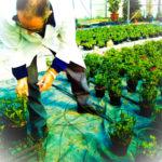 PSX 20150323 141803 150x150 Attività di formazione e conoscenza florovivaistica