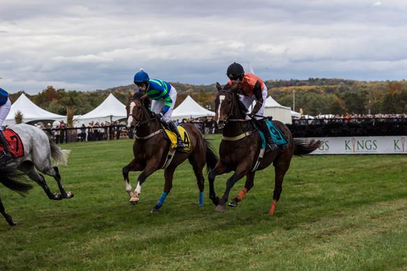 far hills horse race (1)