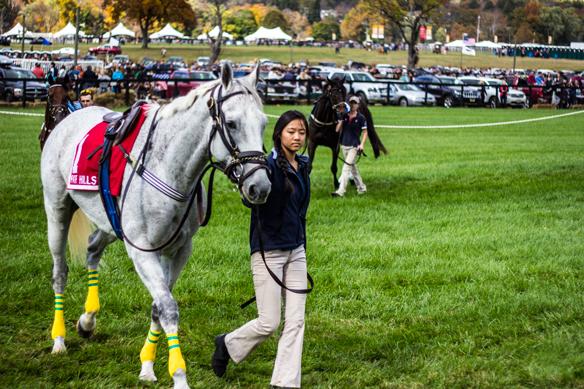 far hills horse race (11)