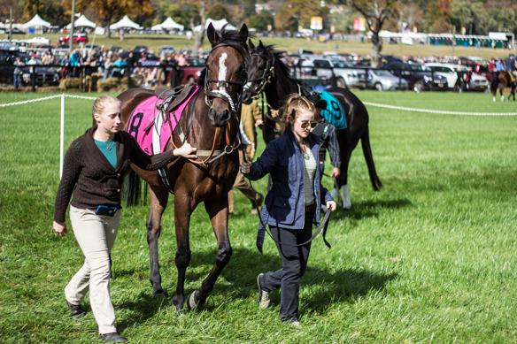 far hills horse race (20)