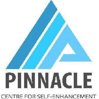 Pinnacle CSEE