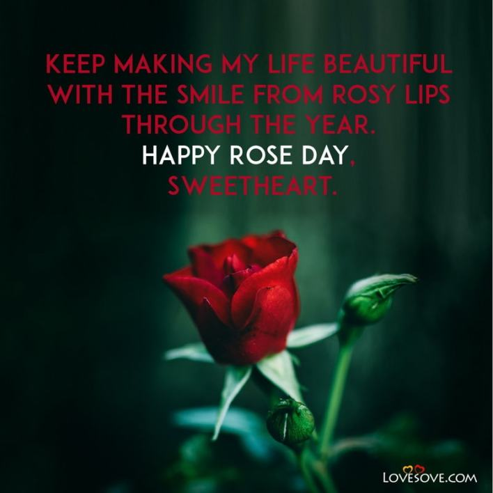 Happy Rose Day Wishes To Friends, Happy Rose Day Wishes For Husband, Happy Rose Day 2021 Wishes Download, Happy Rose Day Wishes For My Love, Happy Rose Day Wishes For Best Friend,