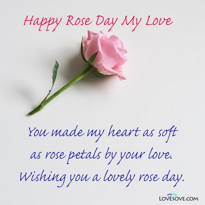 Happy Rose Day Ki Pic, Happy Rose Day Romantic Couple Images, Happy Rose Day Ke Wallpaper, Happy Rose Day Sad Status, Happy Rose Day Greetings, Happy Rose Day All Friends,