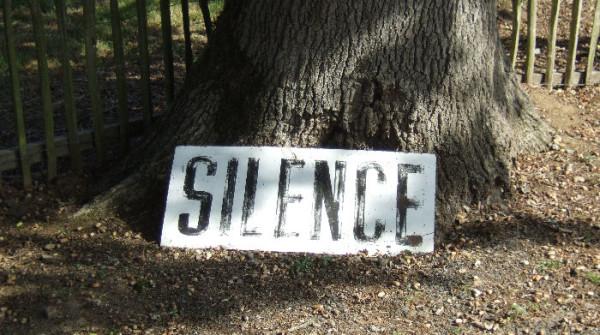 #Facebook e #Twitter nella 'spirale del silenzio'