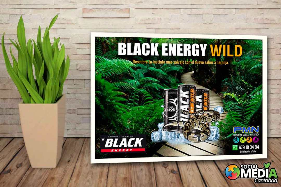 Black-energy-wild---Diseno-corporativo-Social-Media-Cantabria
