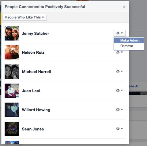 Alle Facebook-Seiten-Fans mögen