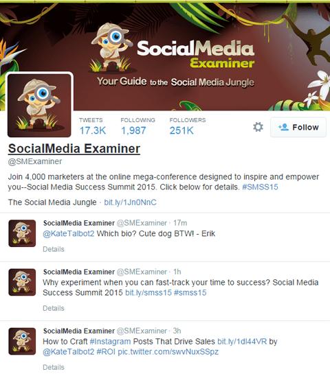 keywords in twitter bio example