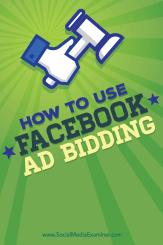 Gebote für Facebook-Anzeigen und Facebook-Kampagnen