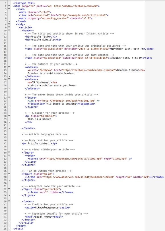 Code-Markup für Sofortartikel