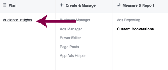 Navigate to Audience Insights in Facebook Ads Manager.