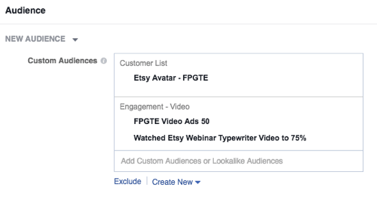 Select your Facebook custom audience and set your budget.