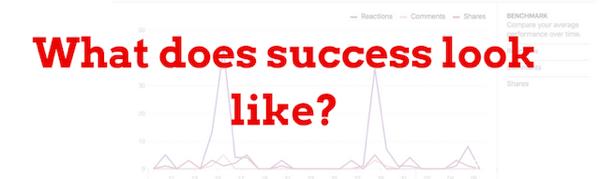 Entscheiden Sie, was Erfolg gemäß Ihren Social-Media-Zielen bedeutet.