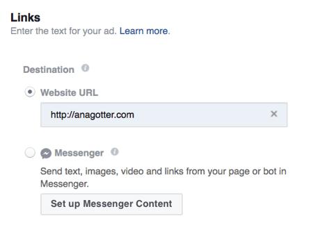Geben Sie die genaue URL ein, an die Sie Nutzer aus Ihrer Instagram-Story-Anzeige senden möchten.