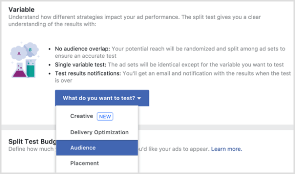Facebook ad split test variable