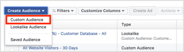 Facebook Ads Manager Audiences dashboard create custom audience
