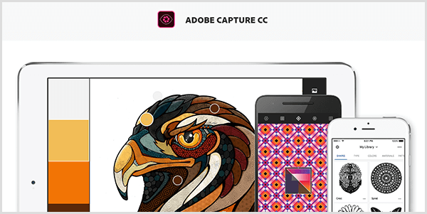 Adobe Capture creates a palette from an image you capture with a mobile device. The website shows an illustration of a bird and a palette created from the illustration, which includes light gray, yellow, orange, and reddish brown.