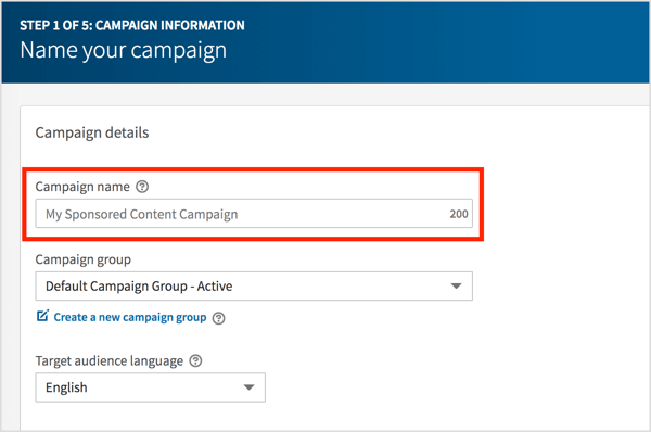 Type in a name for your LinkedIn video campaign and click Next.