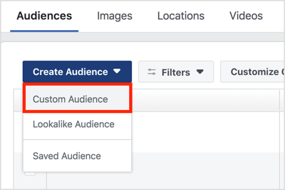 Click Create Audience and select Custom Audience from the drop-down menu.