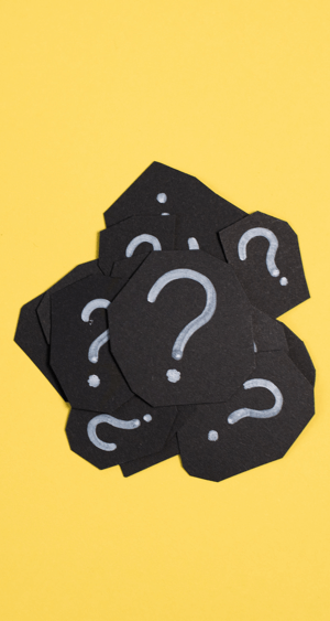 Ask investigative questions to make better decisions.