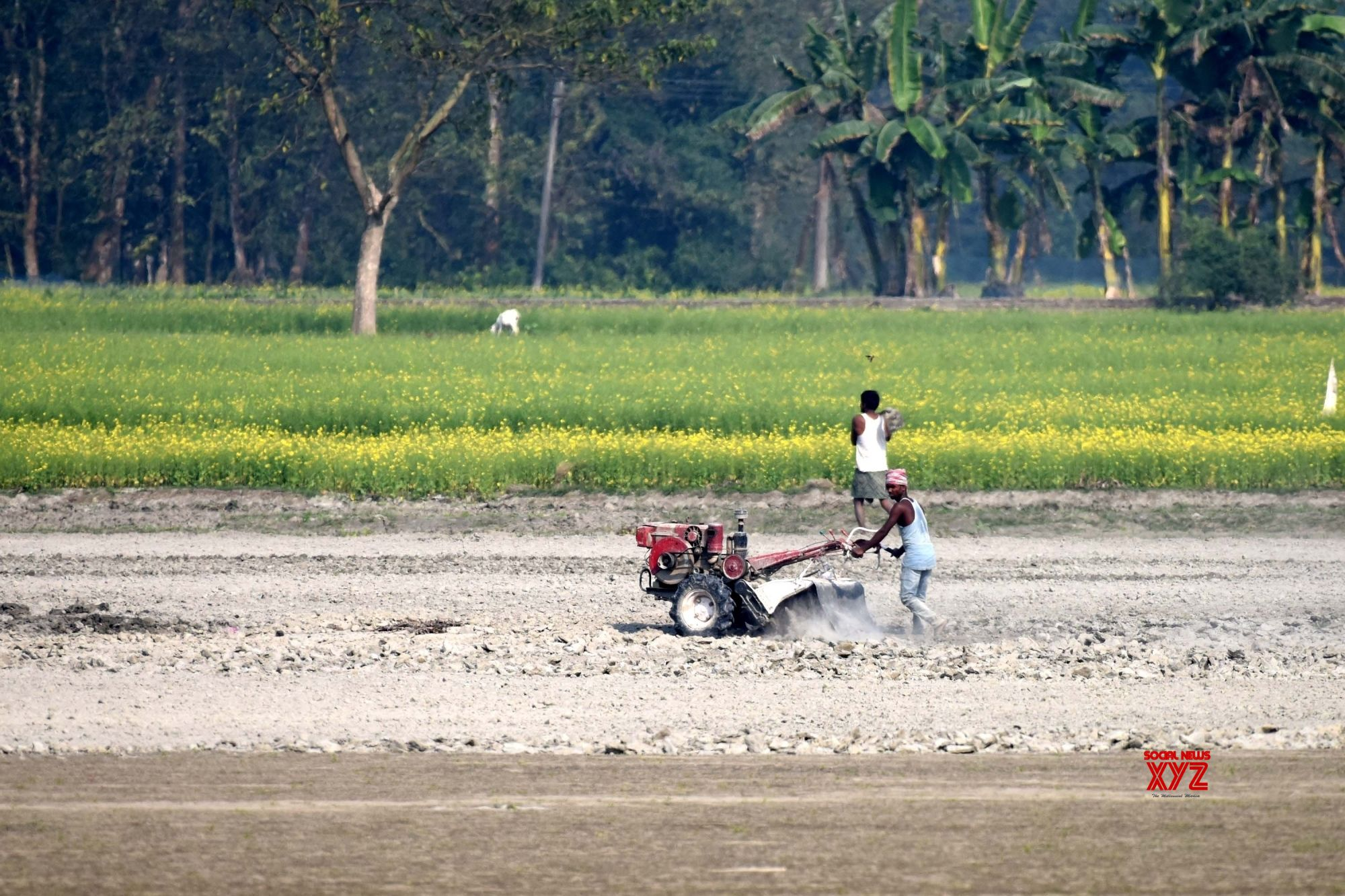 Cabinet clears ordinances for agriculture market reforms