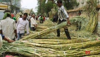Government increases MSP for sugar to Rs 31 per kg - Social