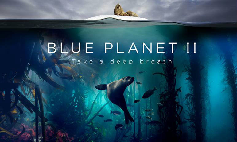 'Blue Planet II: One Ocean and The Deep': Majestic, mesmerising experience (IANS Review, Rating: ****1/2)