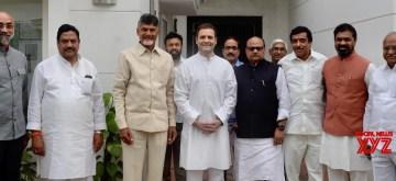 New Delhi: Andhra Pradesh Chief Minister and Telugu Desam Party (TDP) chief N. Chandrababu Naidu meets Congress president Rahul Gandhi at the laters residence in New Delhi on Nov. 1, 2018. (Photo: IANS)