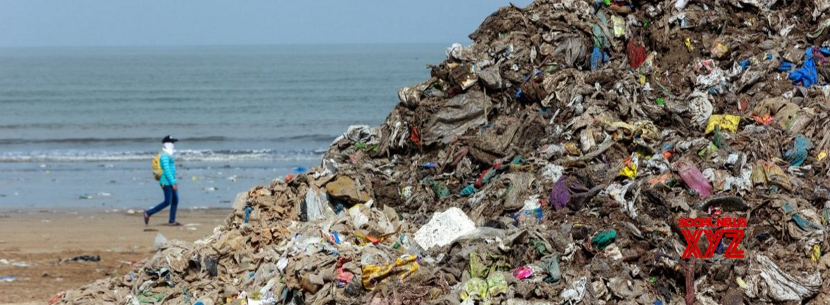 TN forest dept collects 100 kg of plastic waste from Krusadai island