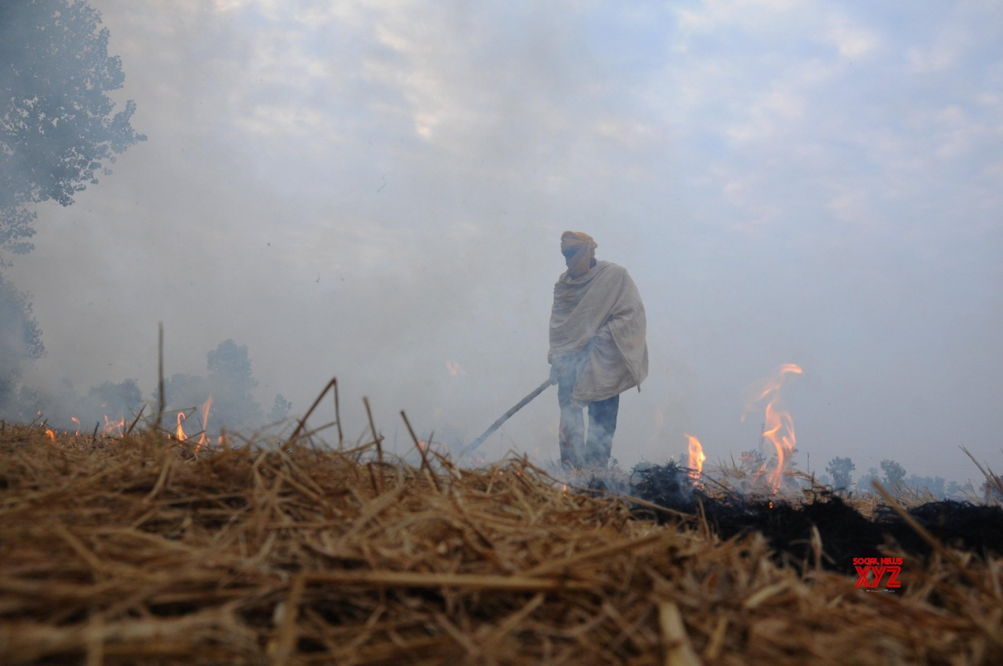 Agri fires aggravated in last decade causing more pollution